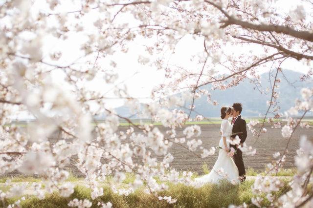 242c8dd7-8dc5-e603-d32a-f80f3044a98a-640x426- 婚攝, 婚禮攝影, 婚紗包套, 婚禮紀錄, 親子寫真, 美式婚紗攝影, 自助婚紗, 小資婚紗, 婚攝推薦, 家庭寫真, 孕婦寫真, 顏氏牧場婚攝, 林酒店婚攝, 萊特薇庭婚攝, 婚攝推薦, 婚紗婚攝, 婚紗攝影, 婚禮攝影推薦, 自助婚紗